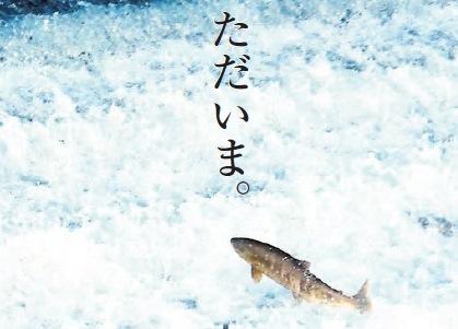 『鮭ただいま』の画像