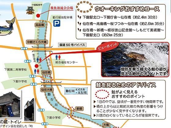 『鮭マップトリ』の画像