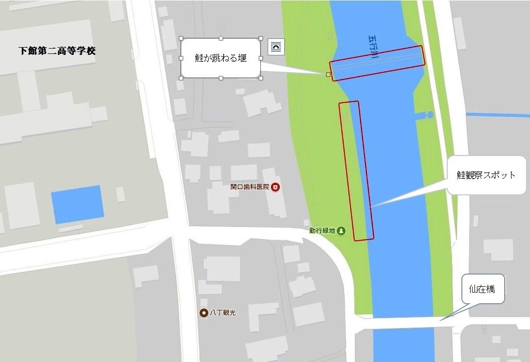 『鮭マップ2』の画像