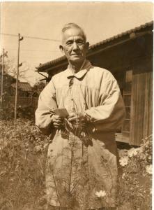 『波山先生庭』の画像