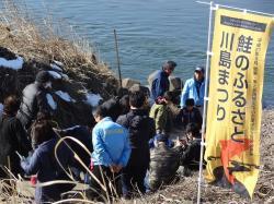 『鮭3』の画像