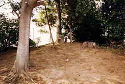 女方古墳群[神明塚](おざかたこふんぐん)