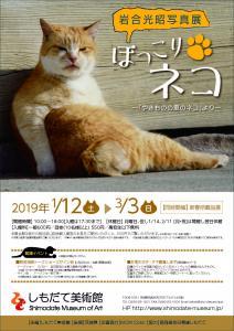 『ネコ展』の画像