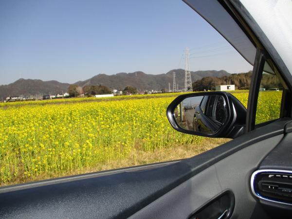 『車窓から』の画像