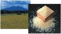 農業振興地域整備計画